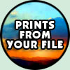 FULL COLOR PRINTING Services FROM YOUR FILE, click here